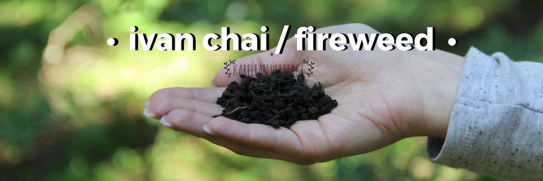 natural-fireweed-herbal-tea