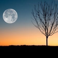 Time to Change and Reborn: Your Monthly Rituals for the Full Moon!