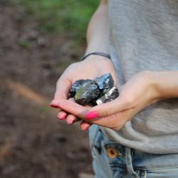Elite Shungite Stones 100 grams (30-50 grams each)