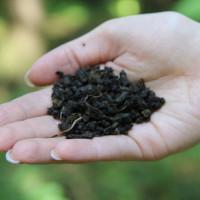 Fireweed Karelian herbal tea 50 grams