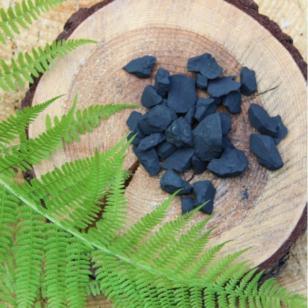 Shungite rocks for water purification 1 lb (450 grams)