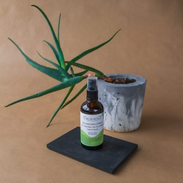 Balancing Shungite Spray with Sage, Spearmint and Tea Tree Essential Oils